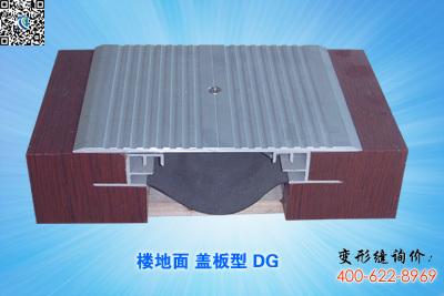 楼地面变形缝DG