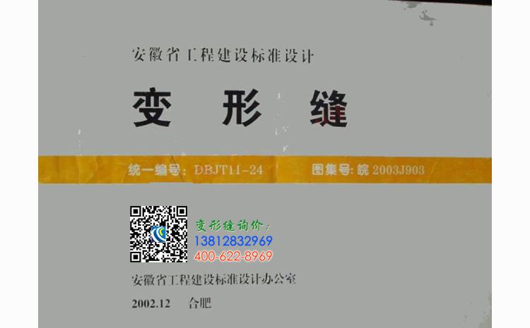 皖2003J903-封面